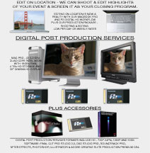 digital post services